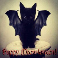 Happy Meowloween 2014 by PharaohAtisLioness