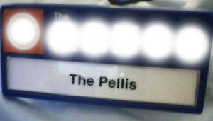 the pellis by the-pellis