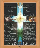 Jesus the Christ by christians