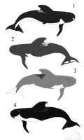 Pilot Whale Adoptables, Set 1 (Sold) by AnoOrcaAdoptables