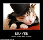 Reaver LOLCat by ForTheLoveOfKakashi