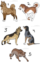 Point adopts - Dogs by Kaeda-adoptables