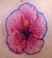 Pink Ink Hibiscus by NateTheKnife