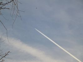 Plane Sent To Check Strange Flying Object by SrTw
