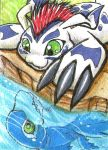 Gomamon and Dolphmon by ChershireHatter