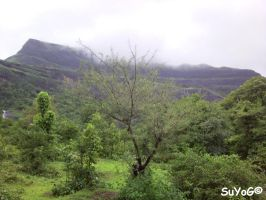 Bhandardara Scenery 1 by sds49in