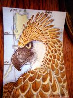 ACEO-Monkey eating eagle by cloudstar-wolf