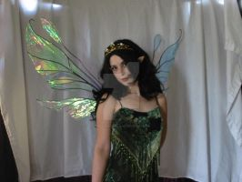 Large Double Fairy wings 3 by FaeryAzarelle