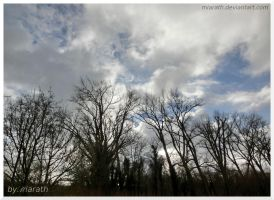 More Clouds ... by Miarath