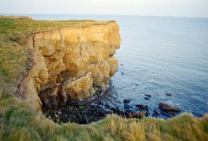 Sea Cliff by y2keable