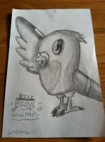 Pidove (Old Art Reupload) by Idellechi