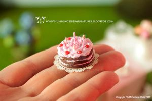 Miniature birthday cake by CaroMcFW