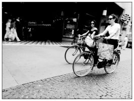 Cycling by bupo