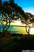Hawaiian Sunrise - 2 by sarahdope