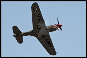 P-40 Break by AirshowDave