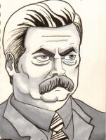 Ron F*%king Swanson by dinkens