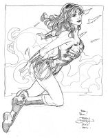 Wonder Woman 2 SDCC2011 by TerryDodson
