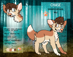 chase 2014 reference sheet by huskynugget