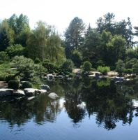 Denver Botanical 20 by Falln-Stock
