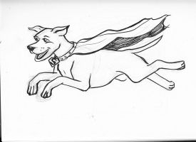 Krypto sketch by rockie-squirrel