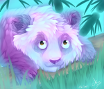 Dreamy Panda (SpeedArt) by CookieKipenda