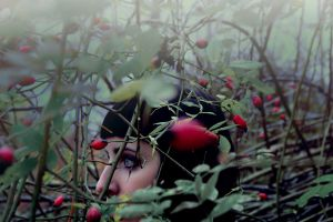 forest fruit by collien