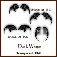 Dark Wings by shd-stock
