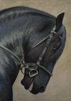 Friesian Stallion Pastel by PASTELIZATOR