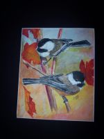 Black capped chickadees by Vsemb