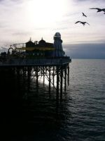 brighton pier by fuxstar