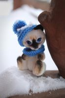 Siamese kitten by Irentoys