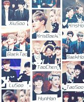 EXO Graphics. What's your favorite pairing? Part.9 by kamjong-kai