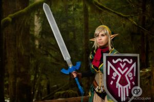 Savior of Hyrule by OneDeviousKitty