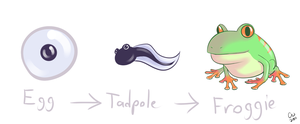 Latale Design Contest: Froggie by TheCatlady