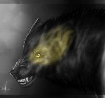 A bad black Wolf by StormAndFreedom