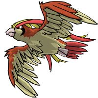Pidgeot by RarroX