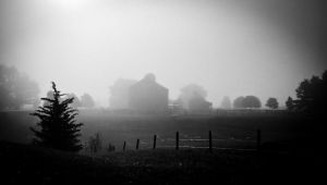 Rural Fog by DerekToye