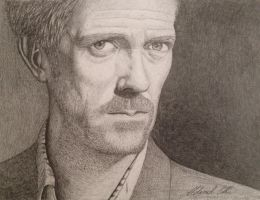Hugh Laurie, House MD by Udvardi
