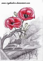 Monte Cassino, 18 may 1944 by RoyThaDon