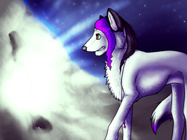 Art Trade : Huskie by iimoa