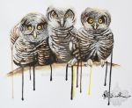 The three Wise Owls by muddly661