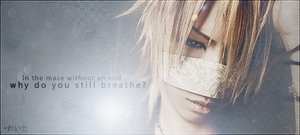 Reita THE INVISIBLE WALL Sig by BeforeIDecay1996