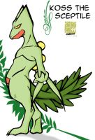 Koss the Sceptile by Raccooncube