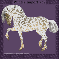 Nordanner Winter Import 752 by DemiWolfe