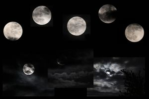 Moon Collage by Treekami