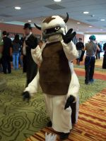 NDK 2011 - Appa by TaintedTamer