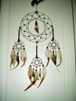Dream Catcher by Schleier
