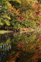 Calm Autumn Waters by tidesend