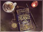 Fantastic Beasts and Where to Find Them by SweetLittleVampire