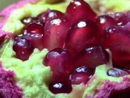 Pomegranate! by Heypolin